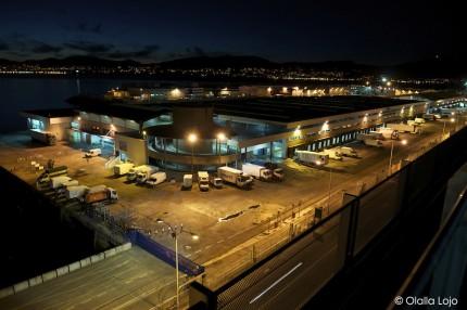 Visita ao porto para escolares turismo de vigo for Oficina turismo vigo